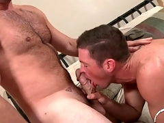 Hairy chest defy here a thick cock gets a BJ